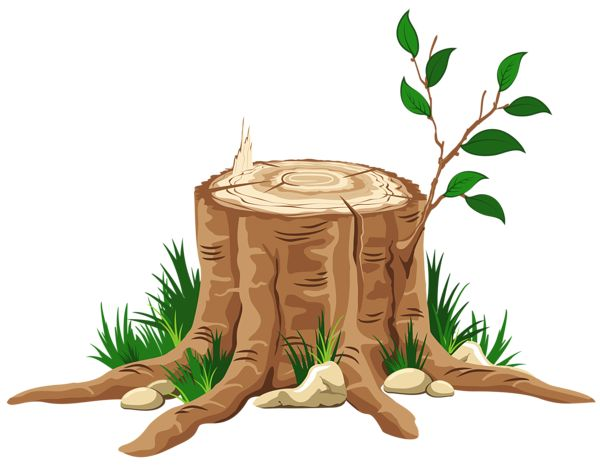 Branch clipart wood branch.  best trees branches