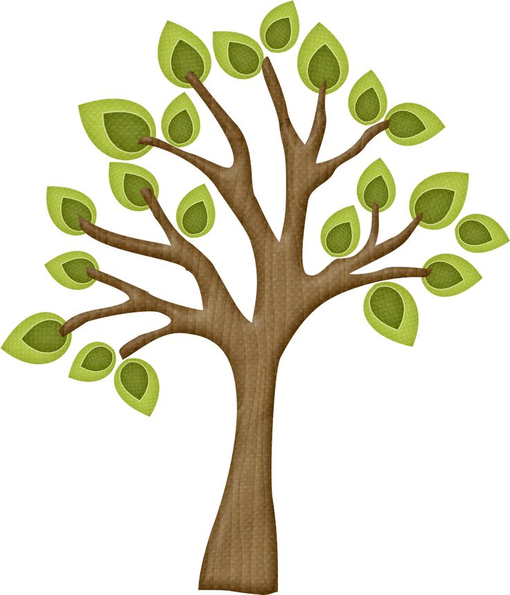 best trees branches. Branch clipart wood branch
