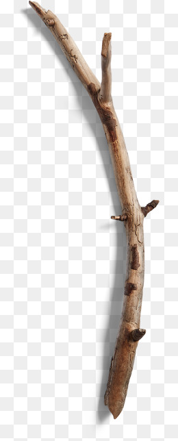Wood branches png image. Branch clipart wooden stick