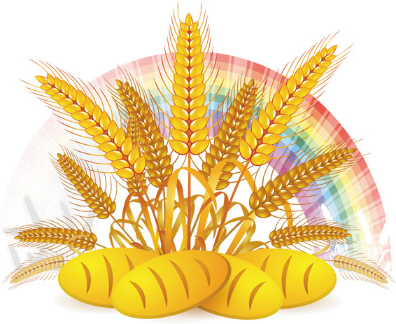 Wheat with free in. Bread clipart vector
