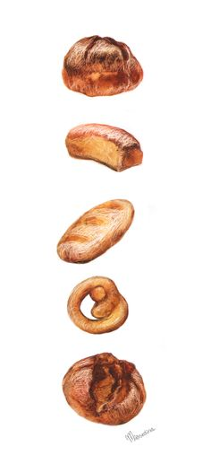 Bread clipart watercolor. On behance food illustrations