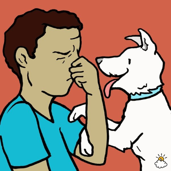 Breath clipart big. Canine bad can actually