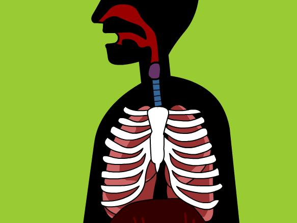 Respiratory system brainpop . Breath clipart human breathing
