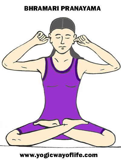 Bhramari pranayama the humming. Breath clipart yoga breathing