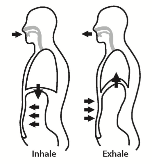 Breathing is not bracing. Breath clipart black and white