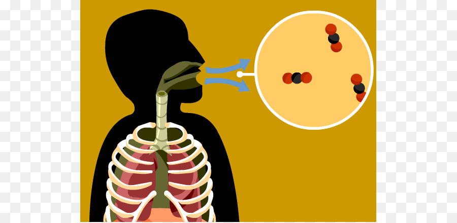 Breathing clipart respiration. Cellular combustion clip art