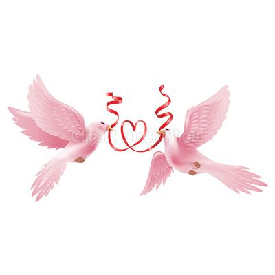 Free downloadable wedding dove. Doves clipart pink