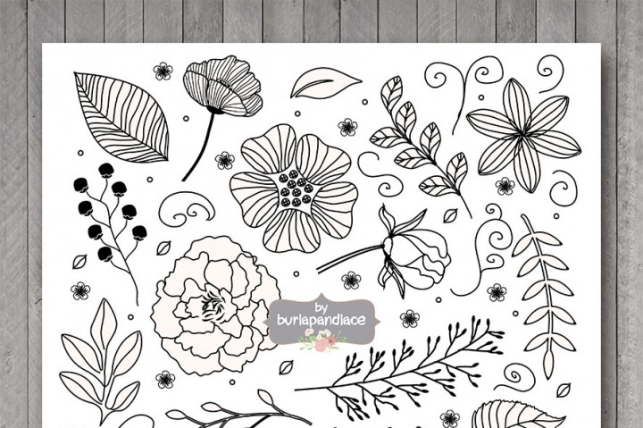 Vector flower hand drawn. Bridal clipart rustic wedding