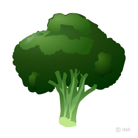 Free clip art image. Broccoli clipart