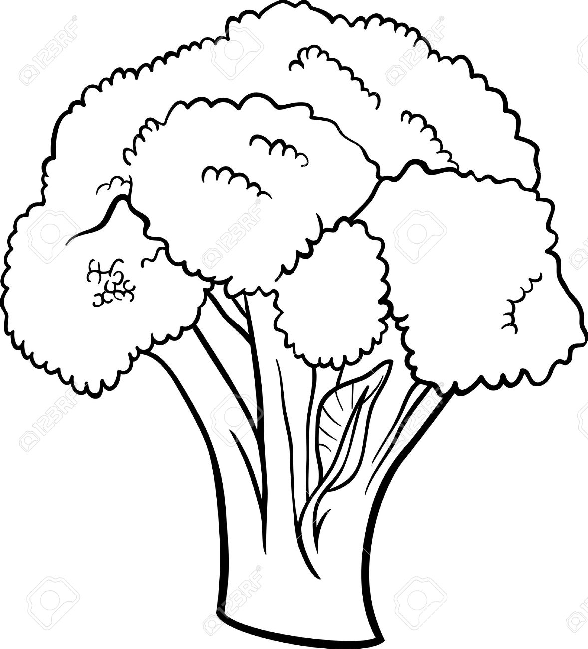 Station . Broccoli clipart black and white