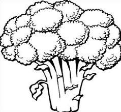 Free clipartmansion com. Broccoli clipart black and white