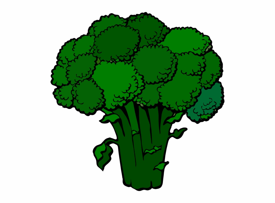 Broccoli clipart broccoli plant. Transparent png download for