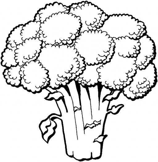 Nutrition health p d. Broccoli clipart coloring page