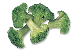 Free page of public. Broccoli clipart cooked