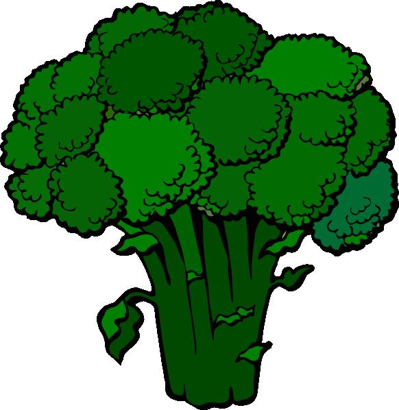 . Broccoli clipart high resolution