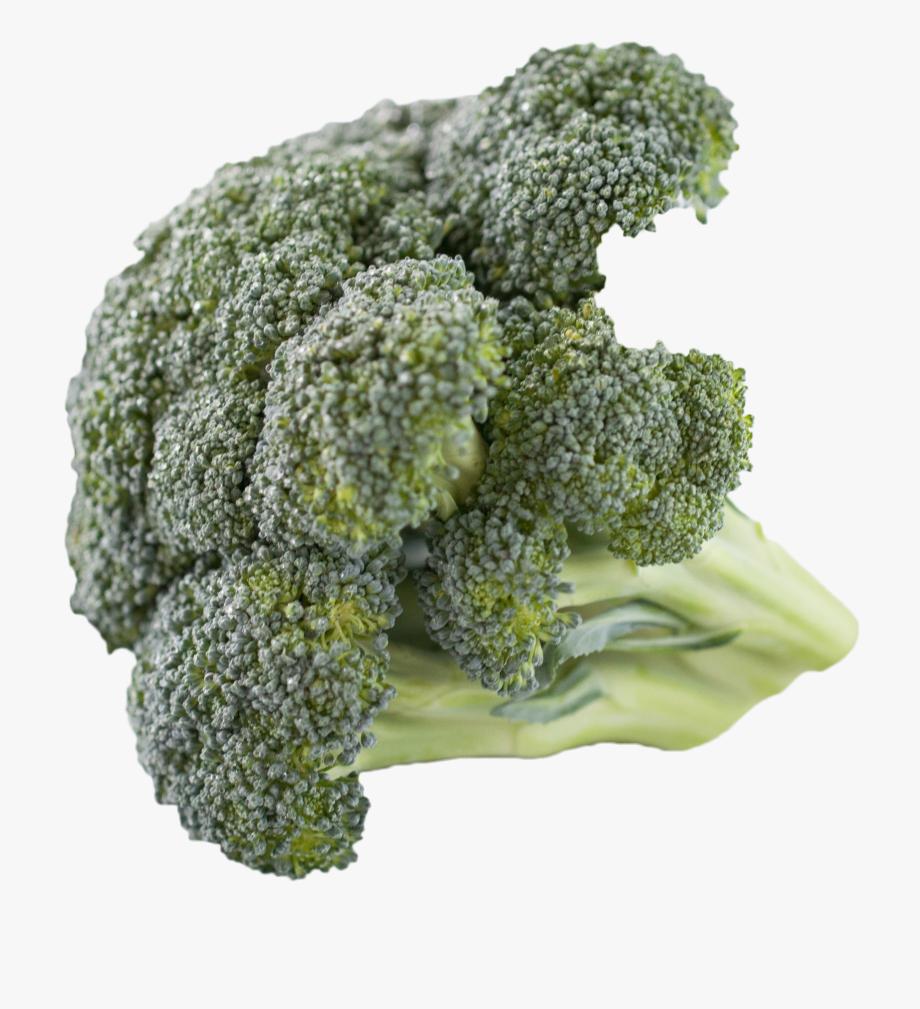 Broccoli clipart high resolution. Food cliparts cartoons
