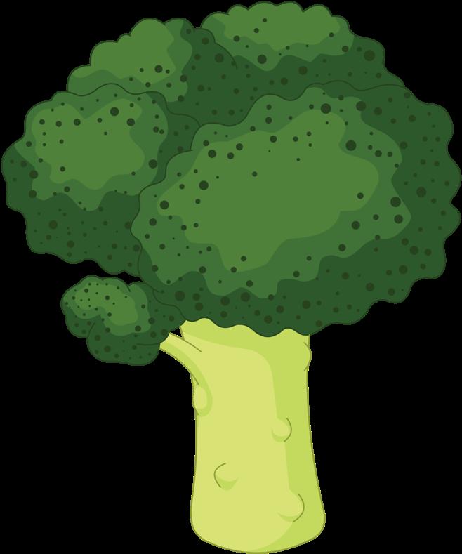 Broccoli clipart lettuce. Color verde en caricatura