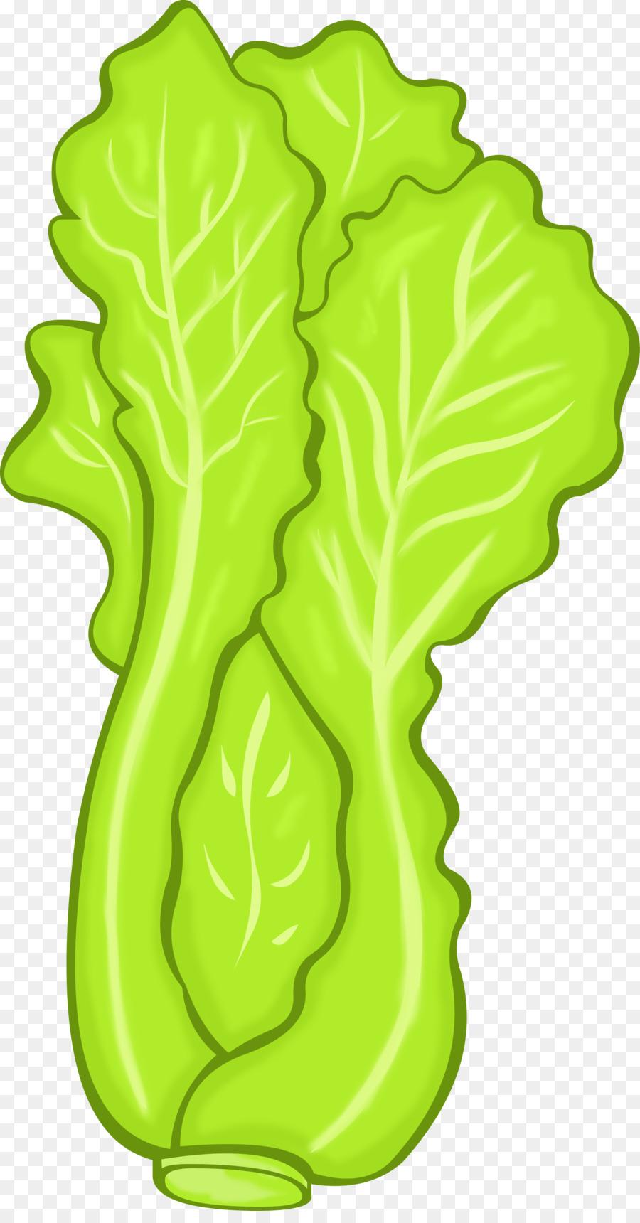 Vegetarian cuisine vegetable food. Broccoli clipart lettuce