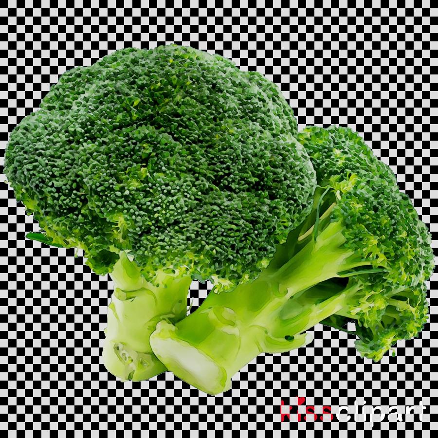 Leaf cartoon vegetable food. Broccoli clipart lettuce