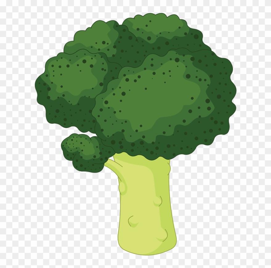 Color verde en caricatura. Broccoli clipart lettuce
