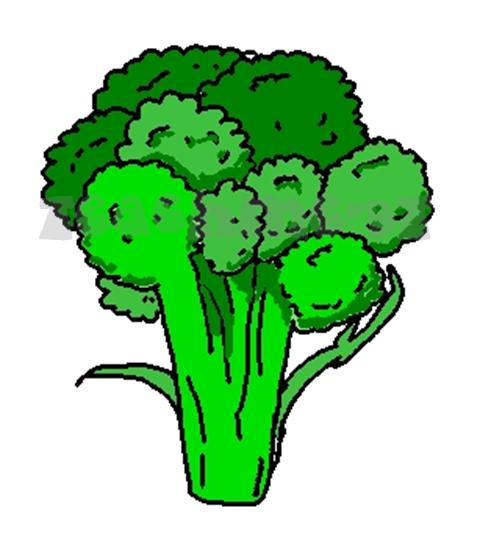 Vegitable free collection download. Clipart vegetables broccoli