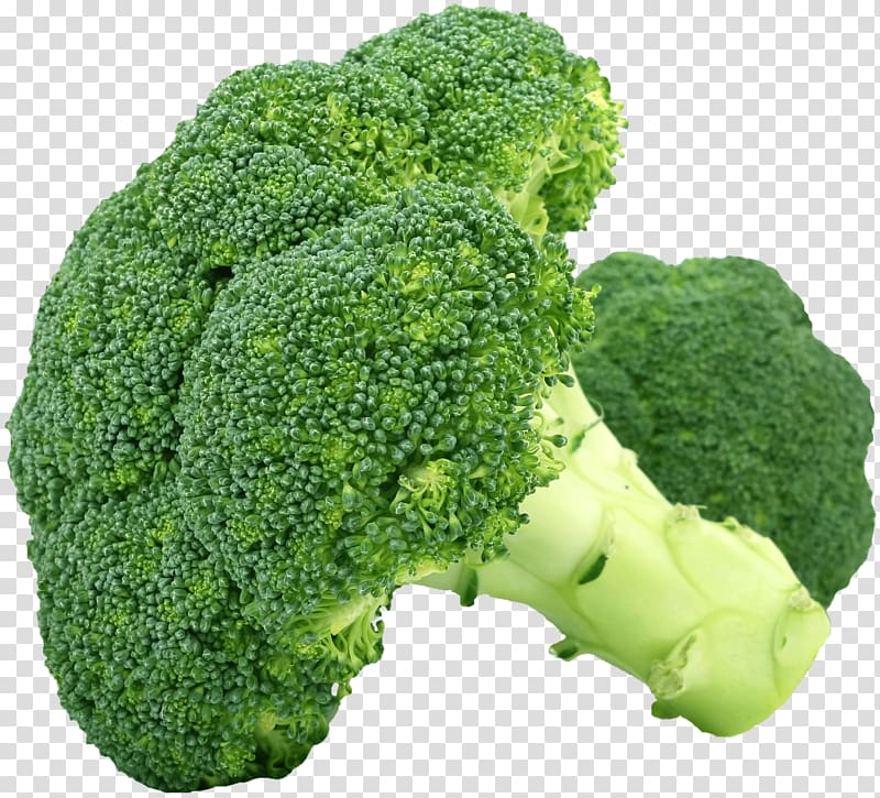 Vegetable food cabbage cauliflower. Clipart vegetables broccoli