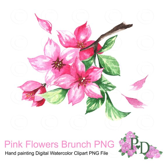 Brunch clipart spring. Pink flowers watercolor png