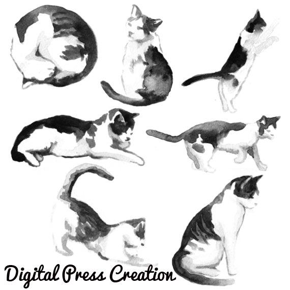 kitty photoshop brushes. Brush clipart cat