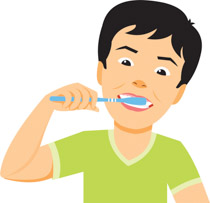 Brush clipart child. Search results for brushing