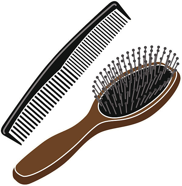 Hair pencil and in. Brush clipart combs