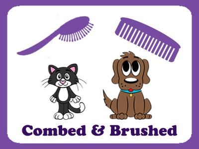 Brush clipart dog brush. Paradise pet salon in