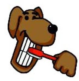 Brush clipart dog brush. Your s teeth ashford