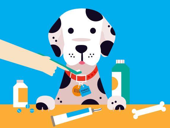 Brush clipart pet brush. Here s why you