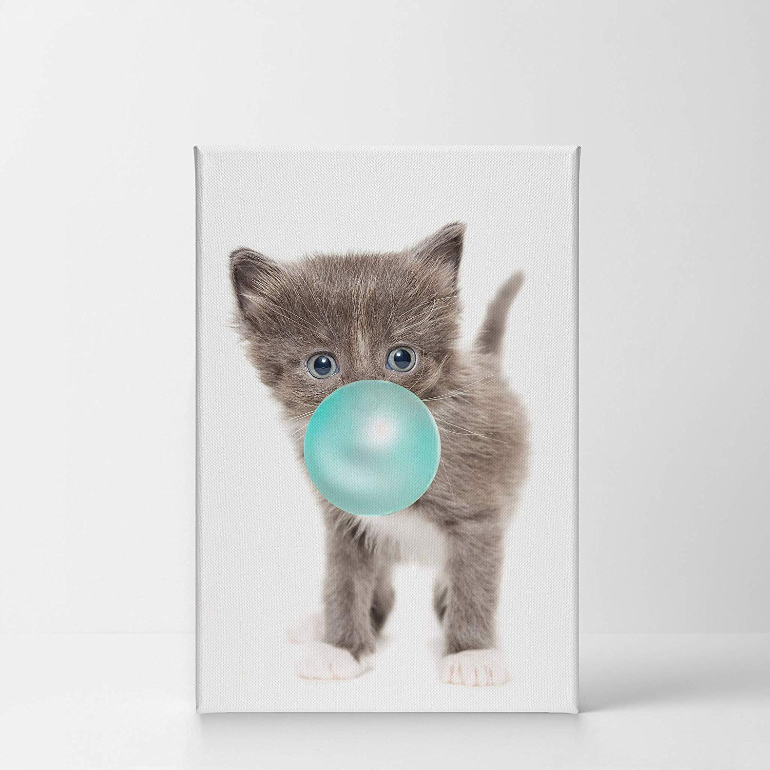 Bubble Gum Kitten. Amazon com smile art