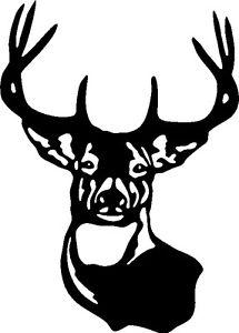 Large typical whitetail deer. Antler clipart white tail