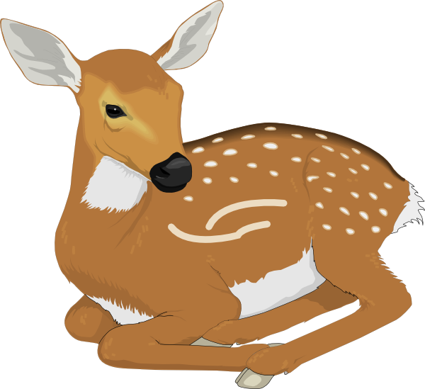 Deer clipart small deer. Free