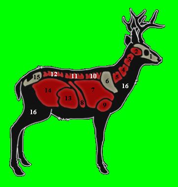 Buck clipart call the wild. Mule deer hunter wikia