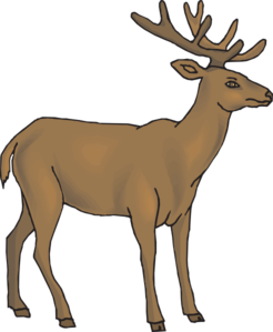 Deer clipart realistic. Cute free images clipartix