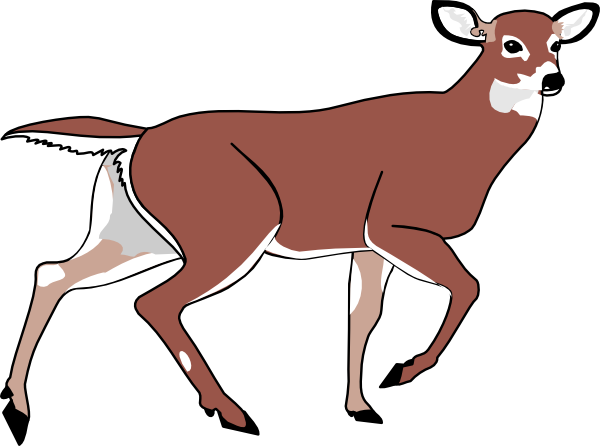 Cute line art free. Deer clipart realistic