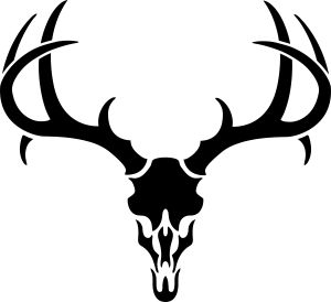 Buck antlers skull decal. Antler clipart white tail