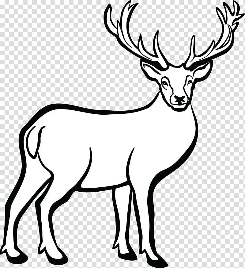 Elk clipart dear animal. White tailed deer line