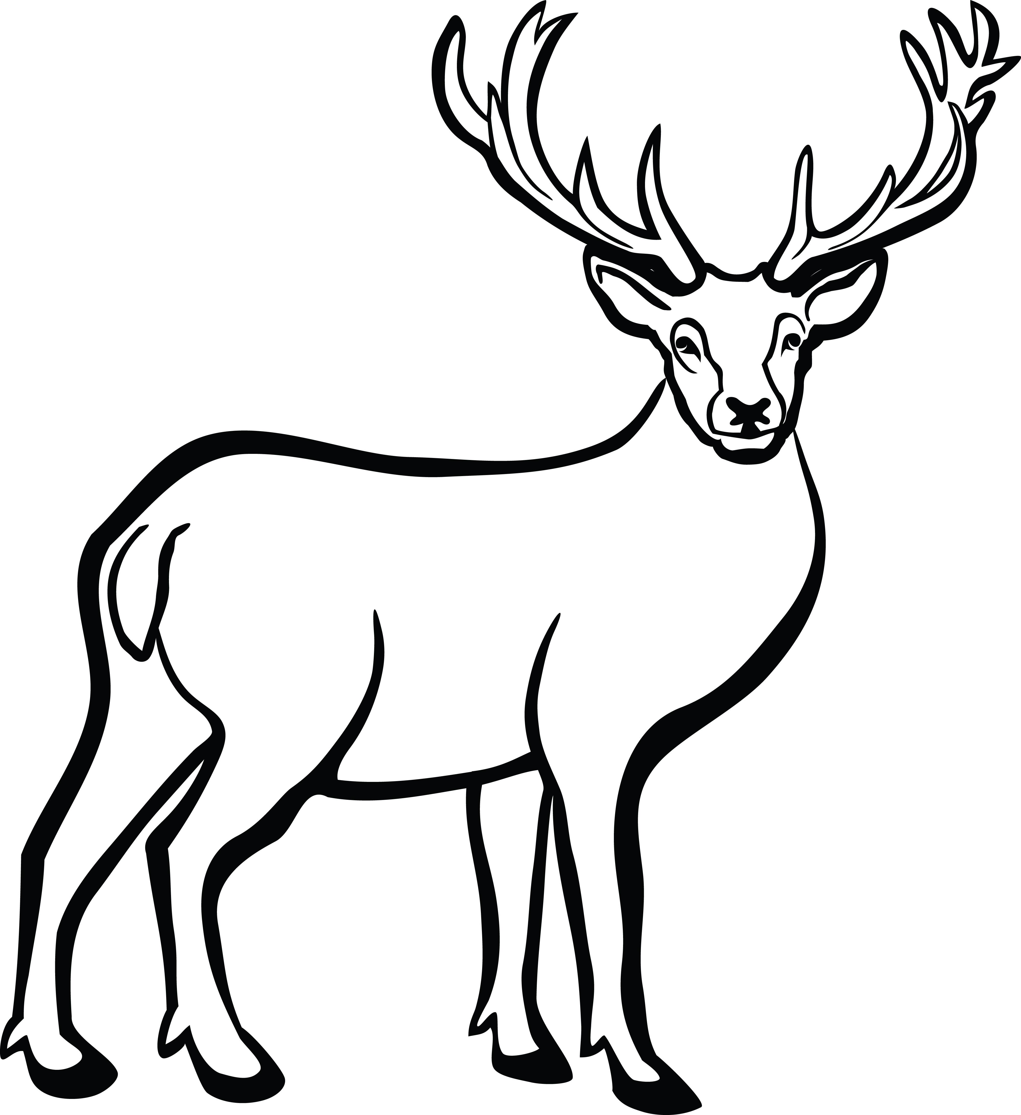 Vibrant idea of a. Deer clipart buck