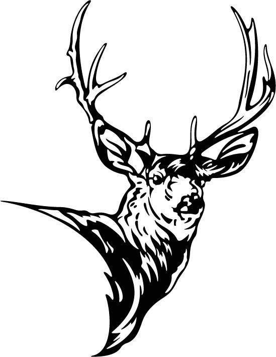 Deer clipart mule deer. Silhouette google zoeken pinterest