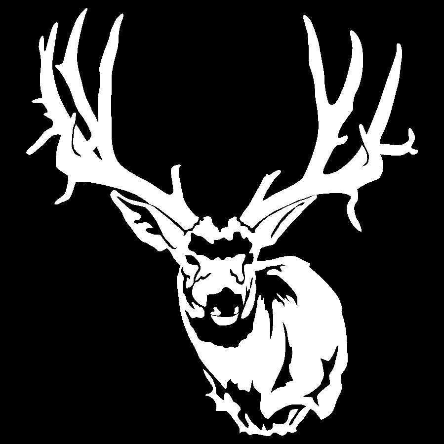 Baby Logo Collection Template: Buck Clipart Mule Deer, Buck Mule Deer Transparent FREE