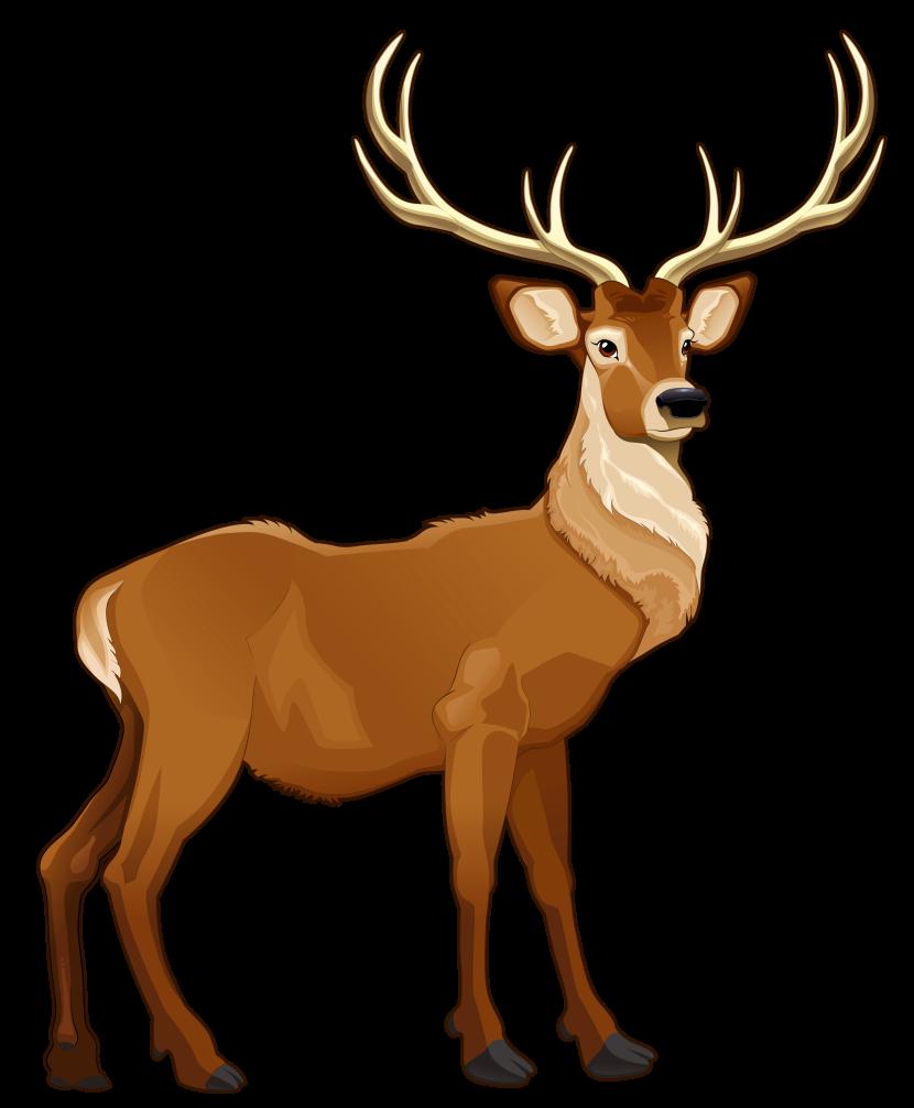 Hunting clipart antelope head.  deer images zip