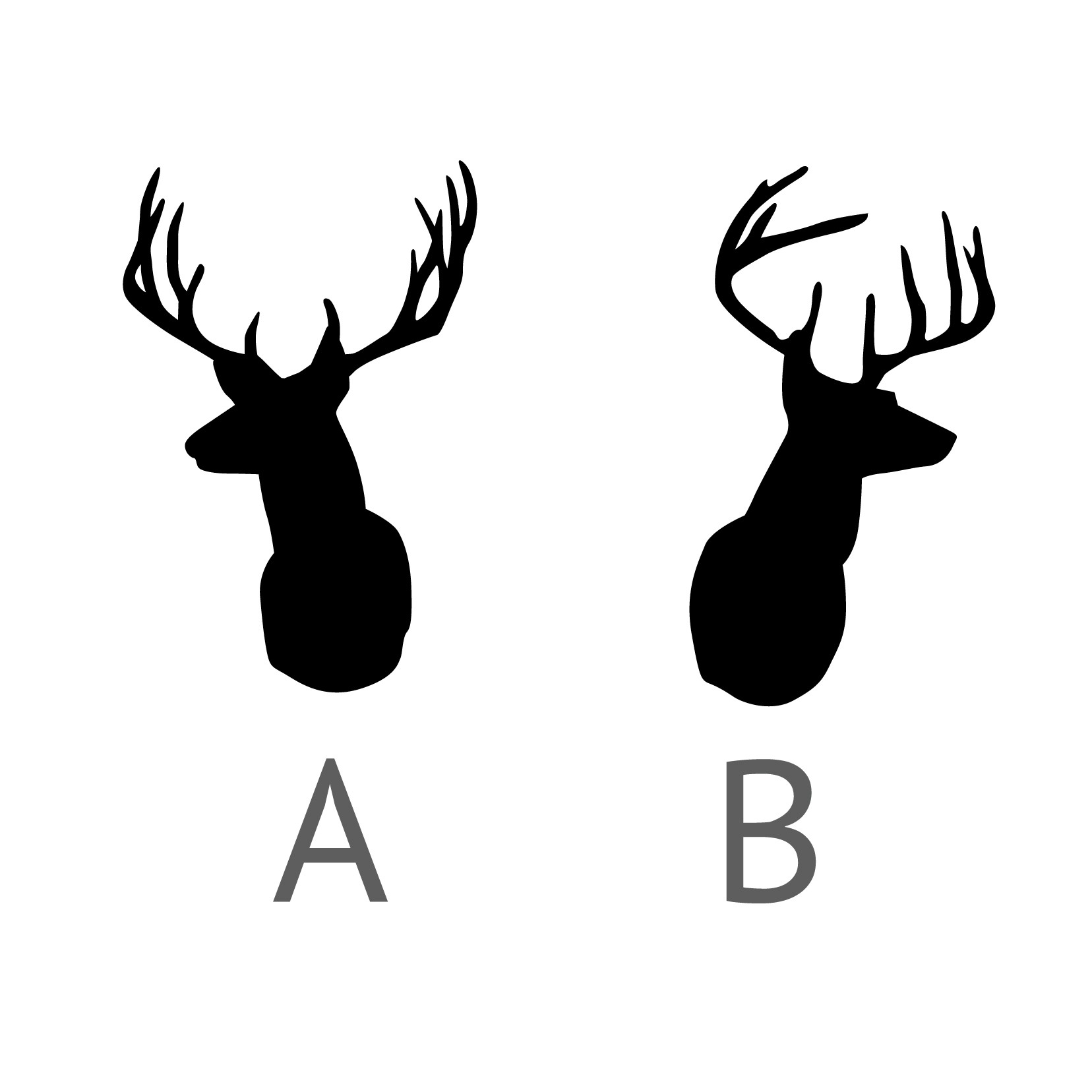 Deer pencil and in. Antlers clipart buck antler