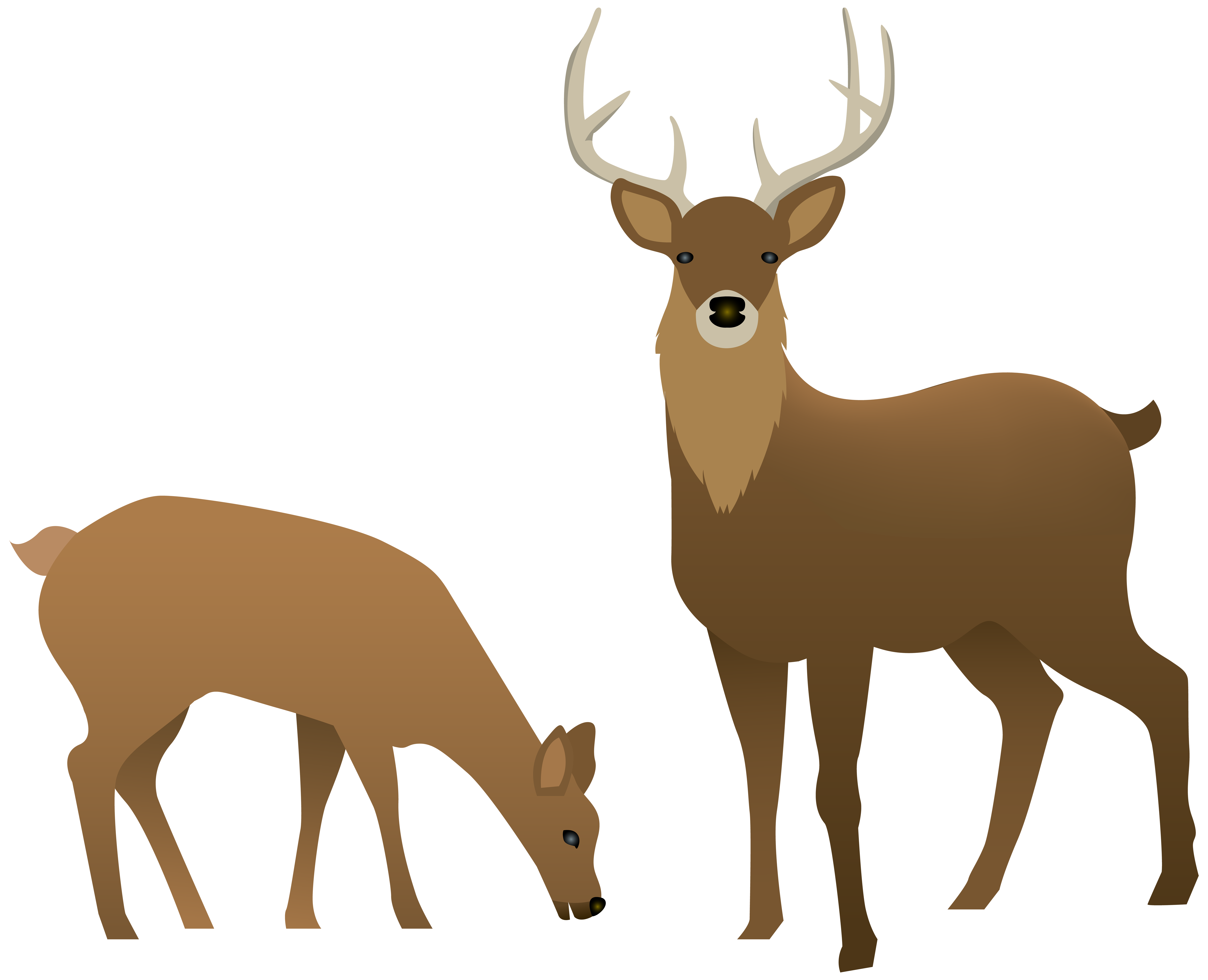Deer clipart roe deer. Doe group stag and