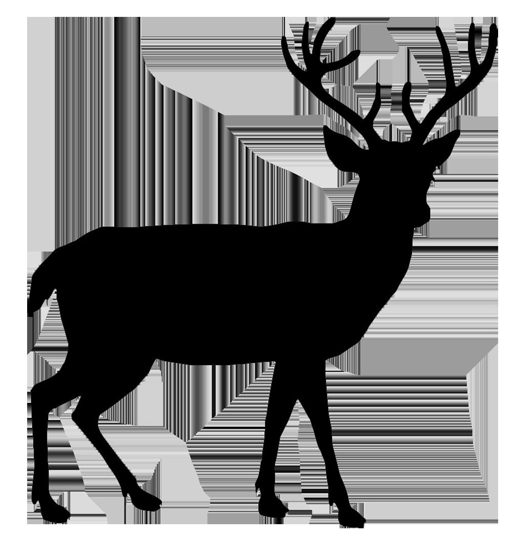 Deer clipart buck. Silhouette at getdrawings com