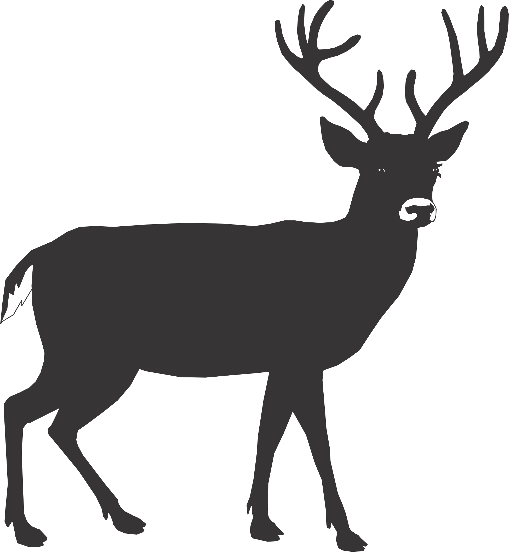 Hunting clipart caribou. Cartoon pictures of deer