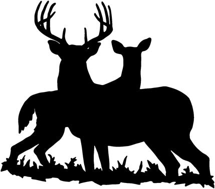 Free whitetail cliparts download. Buck clipart white tailed deer